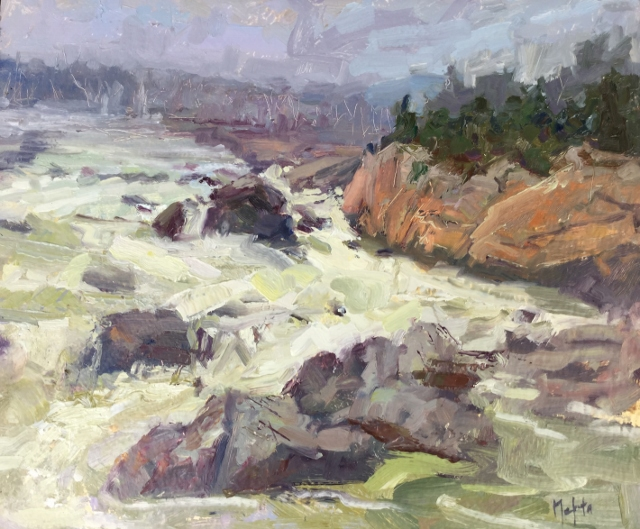 Mehta_Great_Falls_12x14_oil.jpg